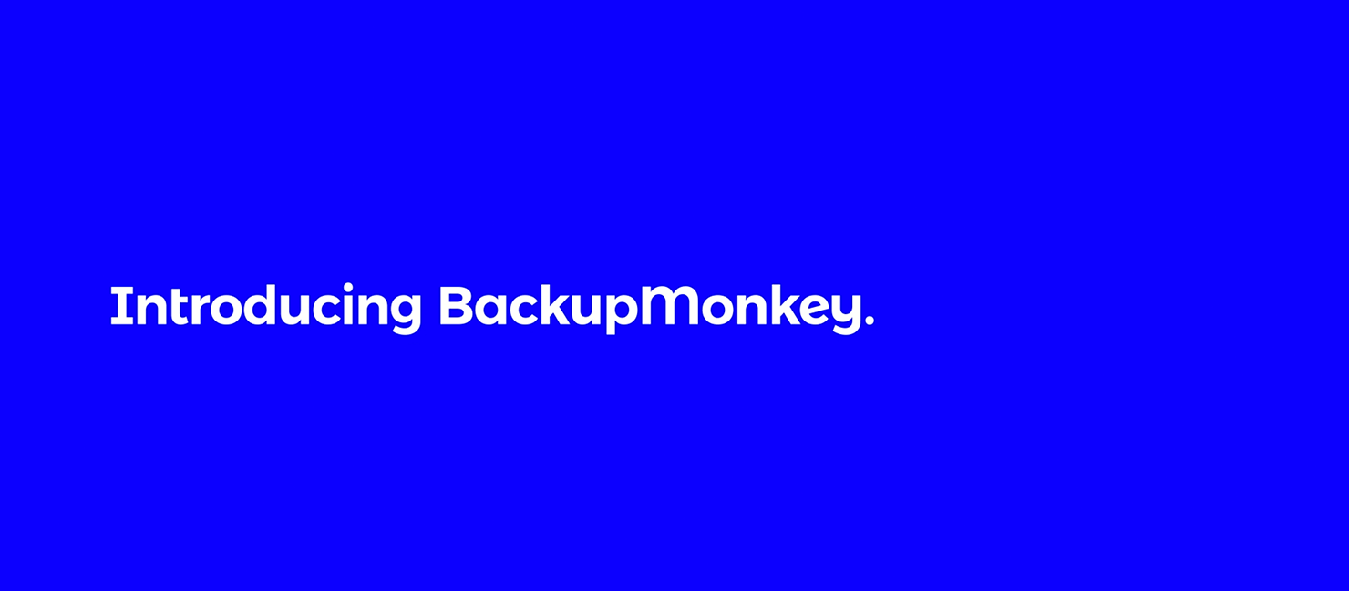 backupmonkey header